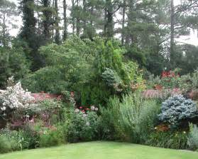 Landscaping Trees and Shrubs Plants