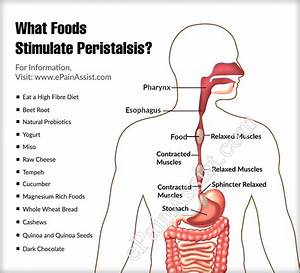 What Foods Stimulate Peristalsis