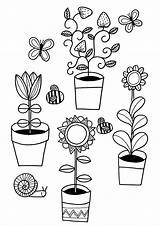 Coloring Colouring Plants Grow Activities Children Plant Growing Planting Gardening Drawing Sheets Flower Clipart Crafts Printable Rocks Getdrawings Rhs Doodle sketch template
