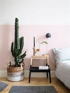 Panier En Osier Casa : d co salon panier en osier avec cactus dans la chambre ~ Dailycaller-alerts.com Idées de Décoration