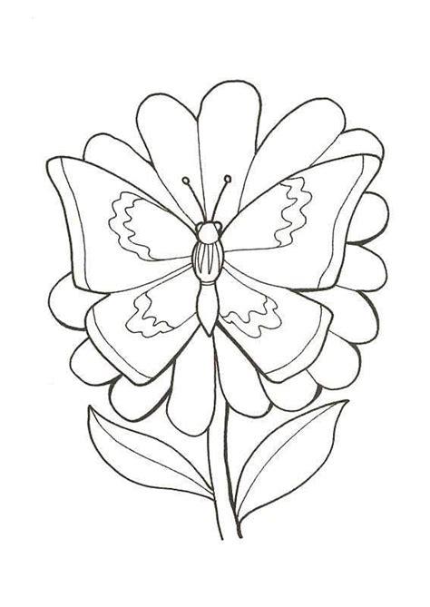 coloriage papillon fleur  sur hugolescargotcom