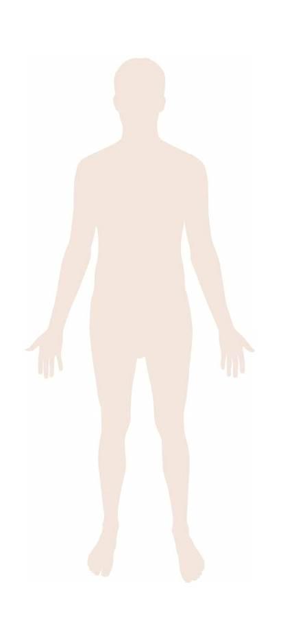 Human Silhouette Svg Wikipedia Wiki Pixels