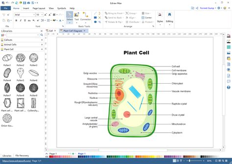 Biology Diagram Illustration Software Start