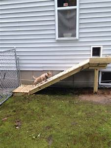 25 best dog ramp ideas on pinterest dog stairs pet With dog door steps