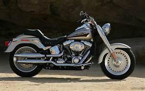 Harley Davidson Flstf Softail 2007 Pdf Motorcycle Shop