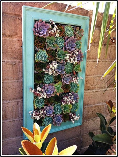 succulent frame aqua blues succulent frame