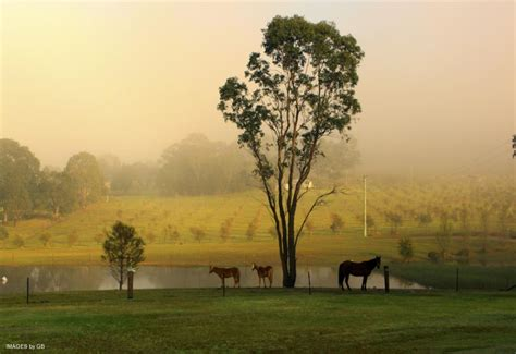 Country Landscapes Photo Gallery Images Landscape