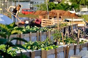 Urban Gardening Definition : buch urban gardening ber die r ckkehr der g rten in die stadt ~ Eleganceandgraceweddings.com Haus und Dekorationen