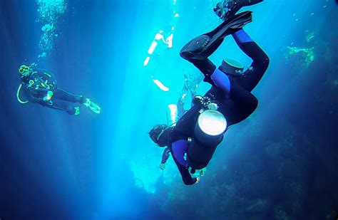cenote dives 10 best sites for cenote diving tulum mexico