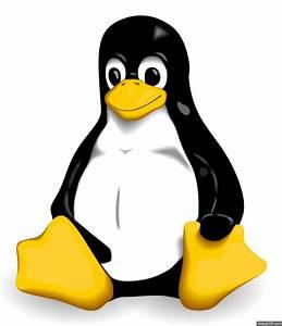 C, U00f3mo, Crear, Gif, De, Im, U00e1genes, En, Linux, Desde, La, Consola