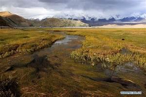 Scenery of Karakol Lake in NW China's Xinjiang - China.org.cn