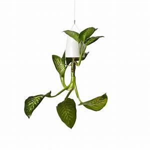 Boskke Sky Planter : boskke sky planter ceramic medium white boskke touch of modern ~ Orissabook.com Haus und Dekorationen