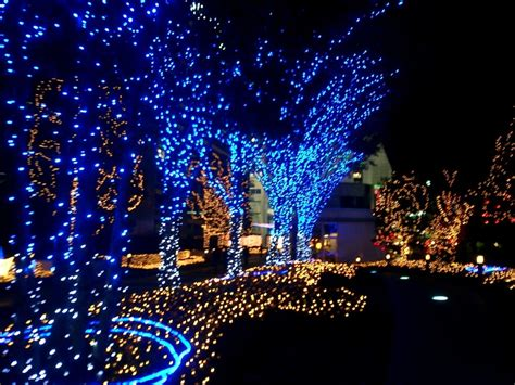Blue And White Christmas Lights Homesfeed