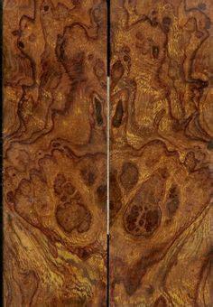 wood identification images   wood types