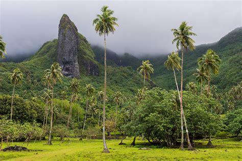 New Photos Of Raiatea French Polynesia