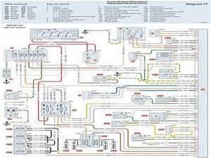 Peugeot 206 Fuel Pump Wiring Diagram  Peugeot  Wiring