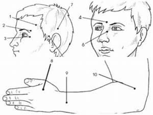 Авторская методика лечения гипертонии и.в. стрельникова