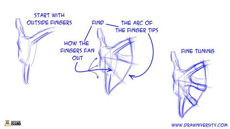 tips  drawing hands  animator island