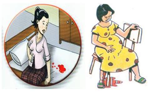 Masalah Kehamilan Trimester 1 2 3 Kreatifitas Anak Bangsa Desember 2012