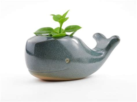 Cute Whale Ceramic Planter