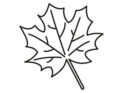 fall leaves coloring pages fall leaves coloring pages coloringsuite