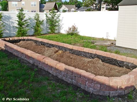 build raised garden bed how to build a raised garden bed for vegetables pet