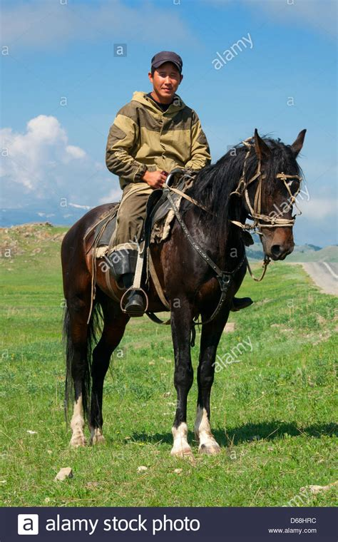 horse traditional male mongolian asian asia nomadic alamy person