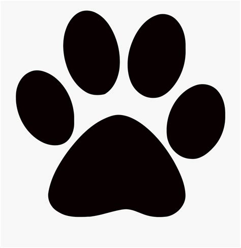 library  paws graphic transparent library png files
