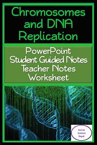 Chromosome  U0026 Dna Replication Powerpoint  Student Guided