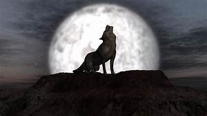 wolf howling at full moon + individual elements on green ...