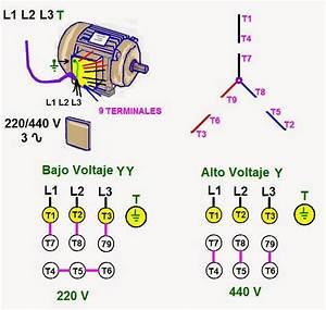 Coparoman  Motores El U00e9ctricos Trif U00e1sicos De 9 Terminales