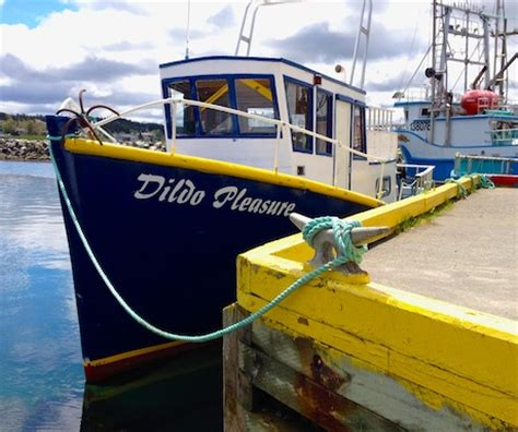Boat Names Real Estate by Top 10 Tips For Visiting Newfoundland The Edge Of The