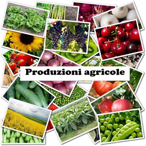 Di Commercio Vr by Agricoltura Di Commercio Di Verona
