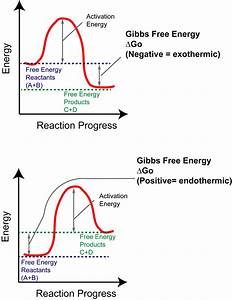 32 Energy Diagram For Exothermic Reaction