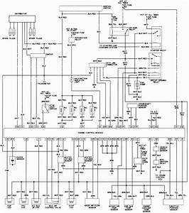 Ze 6023  Toyota Tailgate Diagram Schematic Wiring