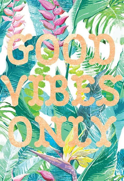 good vibes  hawaii finds good vibes
