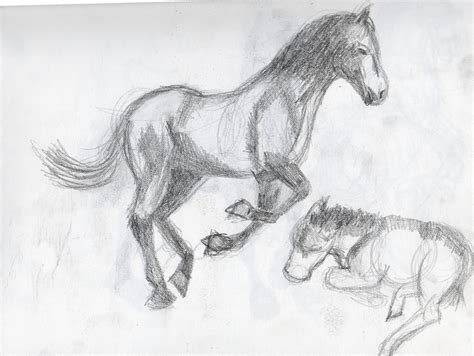 britts graphics animal drawing practice horses