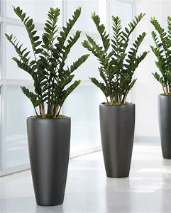 4' ZZ Silk Plant for Distinctive Home and Office Decor at