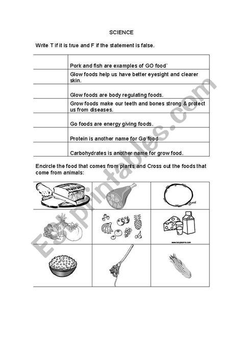 worksheets pre school science worksheet grow glow