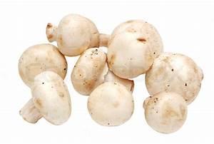 Fresh raw mushroom (champignon) on white background ...