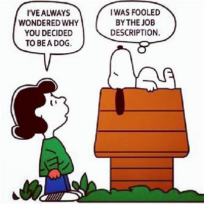 Job Humor Hr Office Dog Snoopy Career