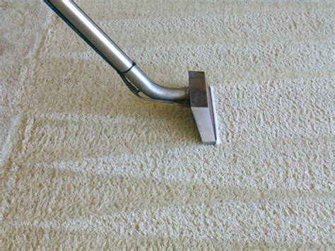 cleaning carpet how to clean carpet steam cleaner carpet vidalondon