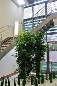 Pflanzen Im Treppenhaus : xxl gro pflanzen innenraumbegr nung eingang treppenhaus flur pflanzen gro gef e planen kaufen ~ Orissabook.com Haus und Dekorationen