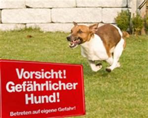 Hund In Mietwohnung Trotz Verbot : vorsicht bissiger hund halter haftet trotz vorsicht hund ~ Lizthompson.info Haus und Dekorationen