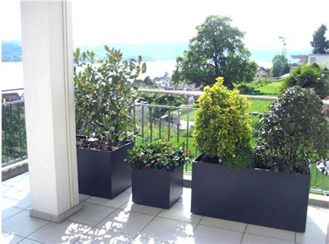 Schöne Pflanzen Für Die Terrasse by G 228 Rtnerei Balzer Ag Gvm Der Gewerbeverein M 228 Nnedorf