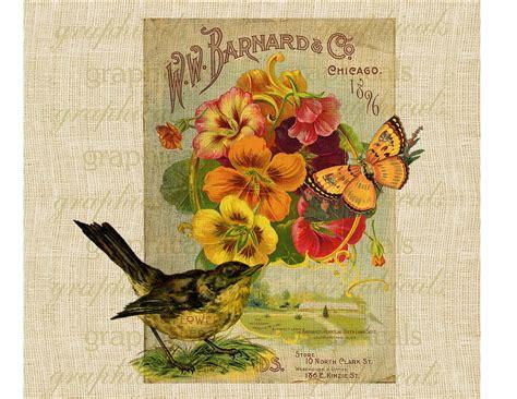 Antique seed packet Bird Butterfly Instant clip art Digital