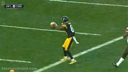 Brown Antonio Flip Steelers Mike Tomlin Td