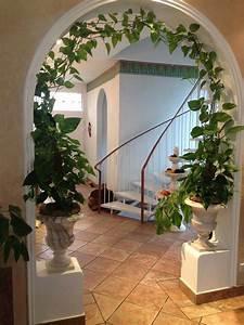 Schnell Rankende Pflanzen : es gibt viele sch ne m glichkeiten die efeutute in der wohnung dekorativ zu platzieren z b in ~ Frokenaadalensverden.com Haus und Dekorationen