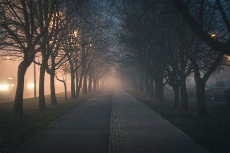 Lights Outdoor Wallpaper by Evening Fog Hazy Landscape Light Mist Nature