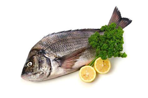 cuisiner dorade grise dorade grise le marche aux poissons fecamp